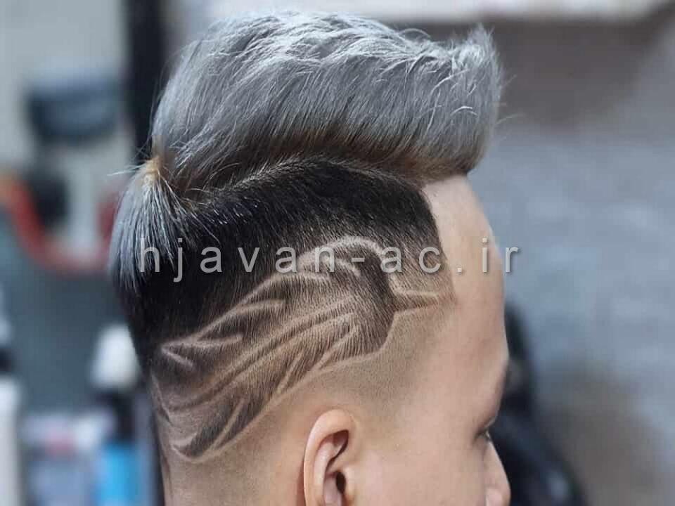رنگ موی لایت همراه با فید